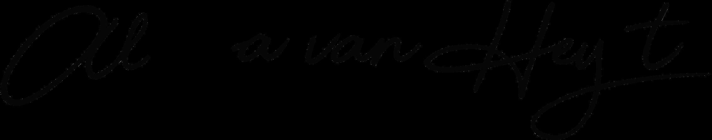 logo fotograaf delft